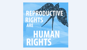 Reproductive rights are Human rights: States have not been eager to transfer this principle into their legislations