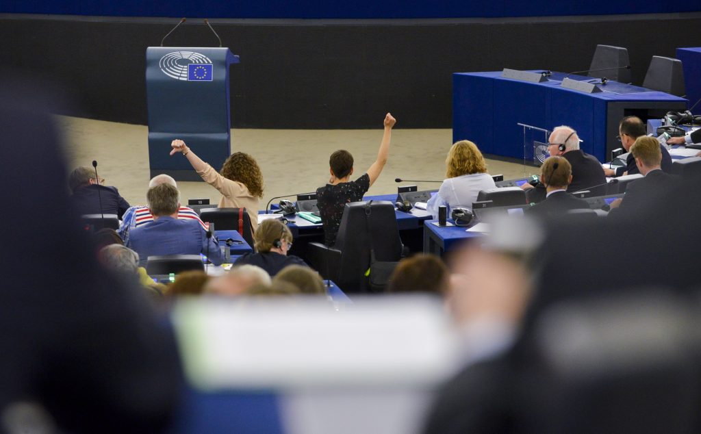 Two MEPs voting in the European Parliament.